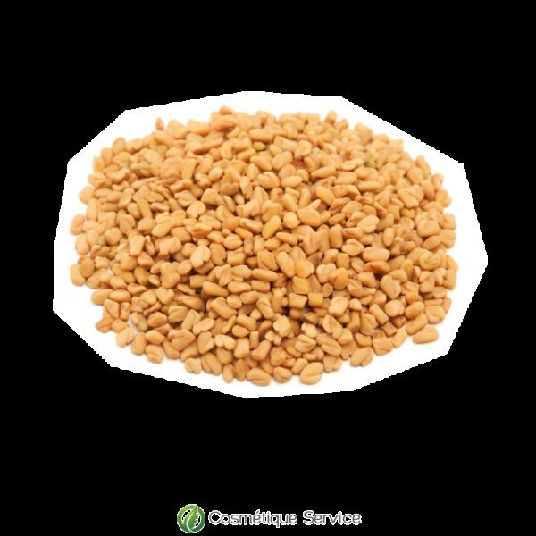 Graines de fenugrec - 1kg